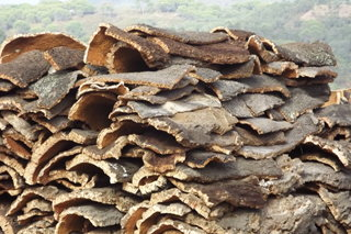 cork pile