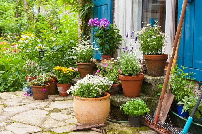 A Porch With Potted Plants