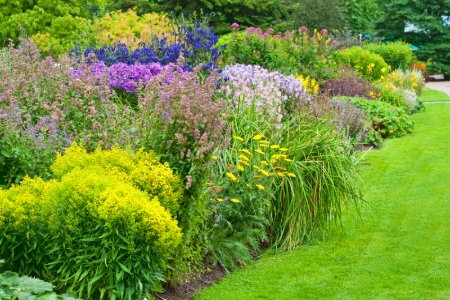 Easy care flowering shrubs for Easy maintenance shrubs