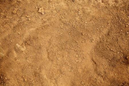 basement flooring solutions for a dirt floor