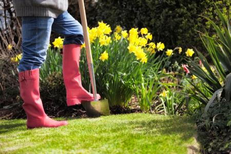 Garden Design With Spring Cleaning In The Garden DoItYourself.com With  Landscape Ideas For Front