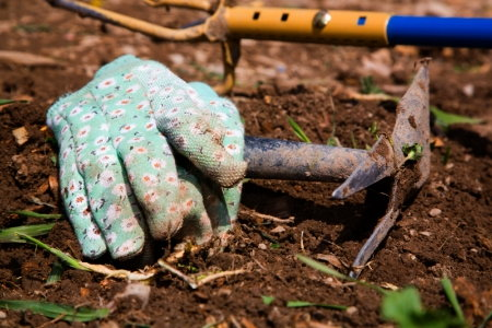How to fix acidic soil organically for Soil yourself