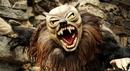 13_WerewolfDiet.jpg