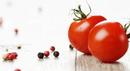tomato_000043648692_Small.jpg