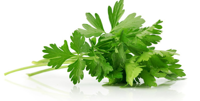 parsley_000017289497_Small.jpg