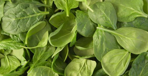 27_Spinach.jpg
