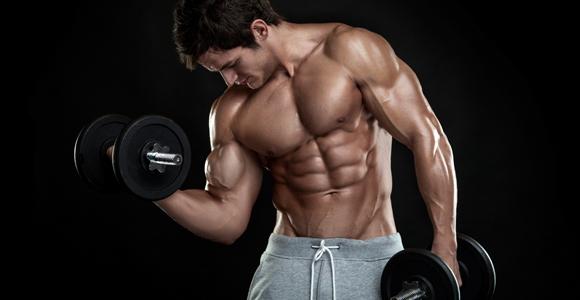 05_MuscleMass.jpg