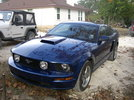 Pics of stang