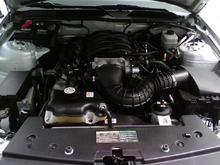 Mustang Engine