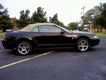 1999 Mustang GT Convertible