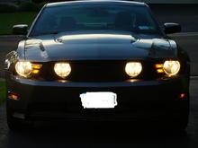 2010 Mustang 5