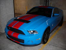 Ford 2010 Shelby GT500