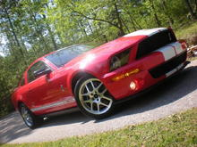 My 2009 Shelby GT500