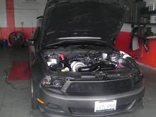 My Mustang being Dynotuned.