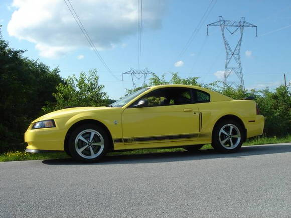 Zinc yellow 2003 Mach1