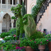 Topiary in front of Italy.