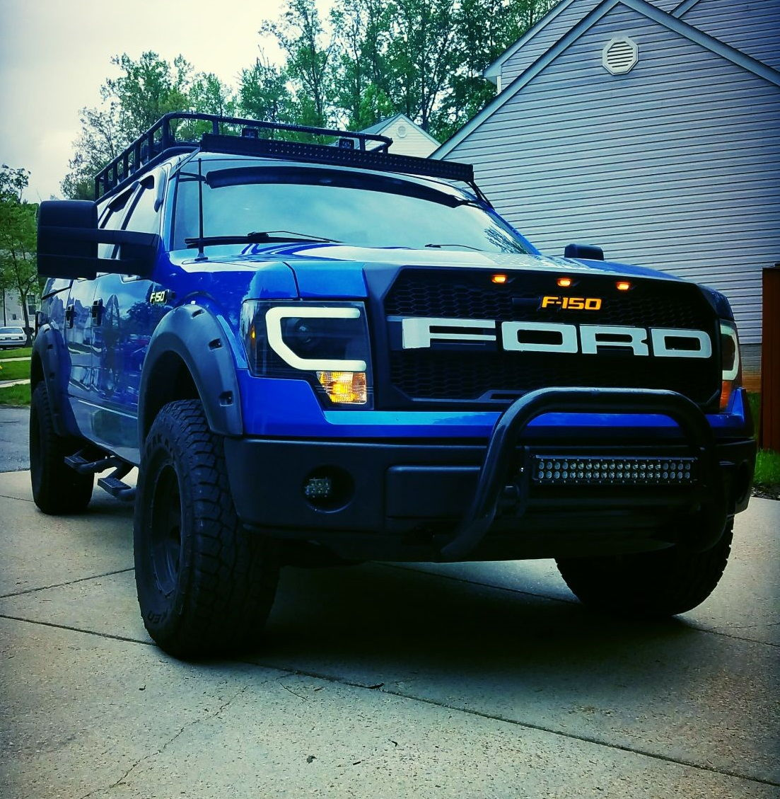 2014 ford raptor grill