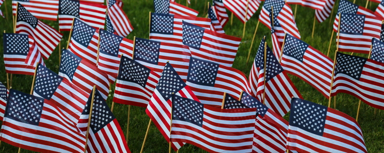 Veterans Day Car Sales and Military Incentives