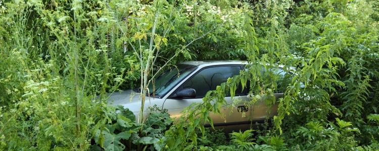 Can I Avoid Repossession by Hiding My Car?