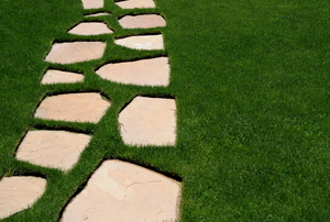 Stepping stones in a yard.
