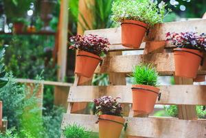 vertical gardening pallet with pots