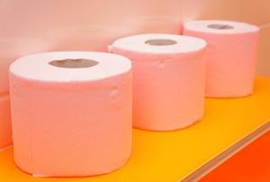 Row of toilet paper rolls