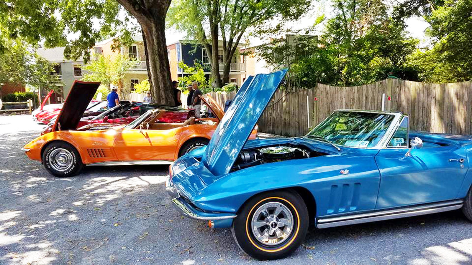 Corvette meet, Everedy and Shab