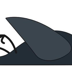 Dead bird illustration