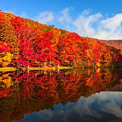 Beautiful fall foliage reflected on a lake