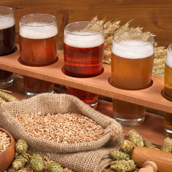 types of beer and hops
