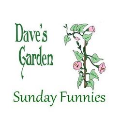 Dave's Garden Sunday Funnies Logo