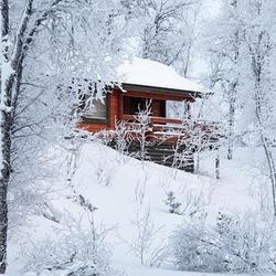 Winter cabin snow scene