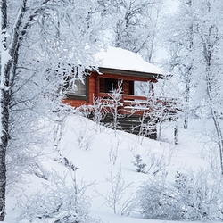 Winter cabin snow scene