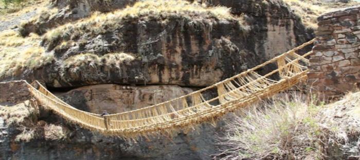 South American grass bridge