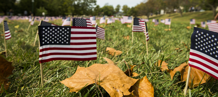 Small American Flags planted in grass with leaves