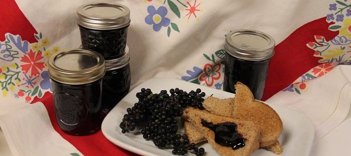 wild grapes, jelly and toast