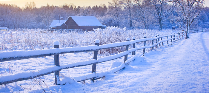 A snowy farm road, fence and pasture