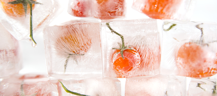Whole tomatoes frozen in large blocks of ice