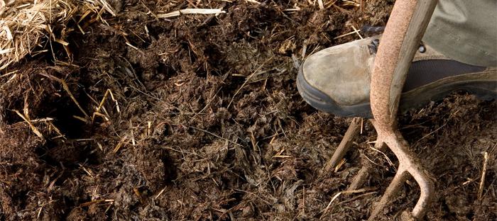 Pitchfork Turning Compost