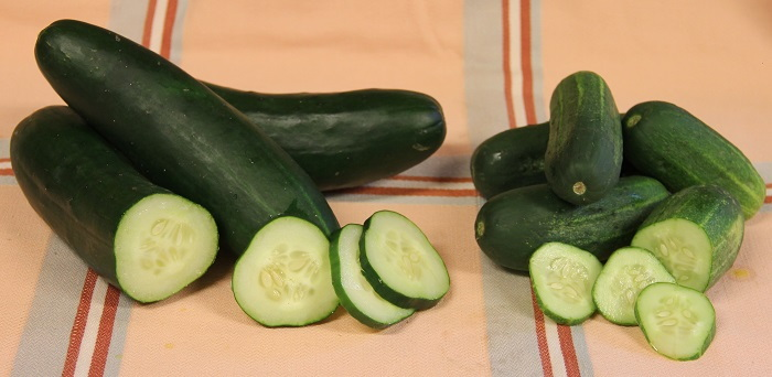 slicing and pickling cucumbers