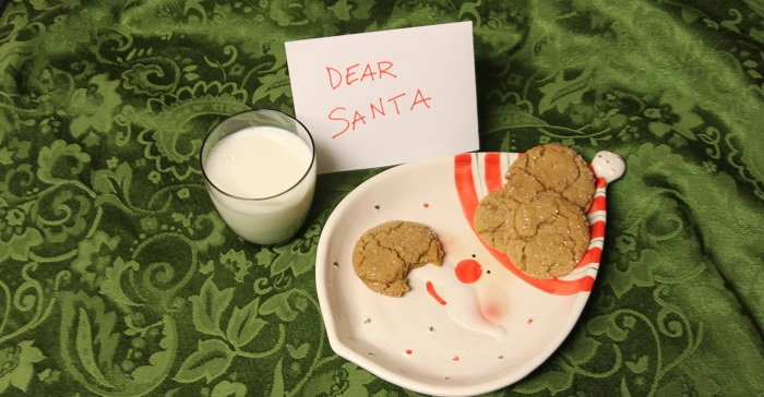 Santa face plate with ginger cookies, milk and note ro santa