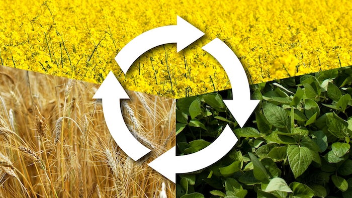 a graphic illustrating basic crop rotation