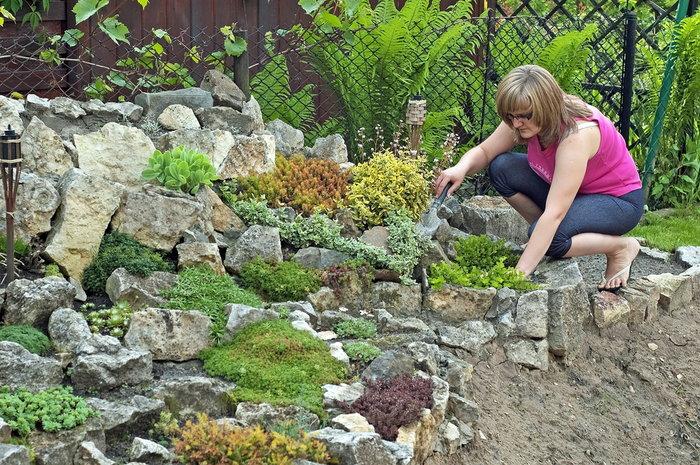 Rock garden care