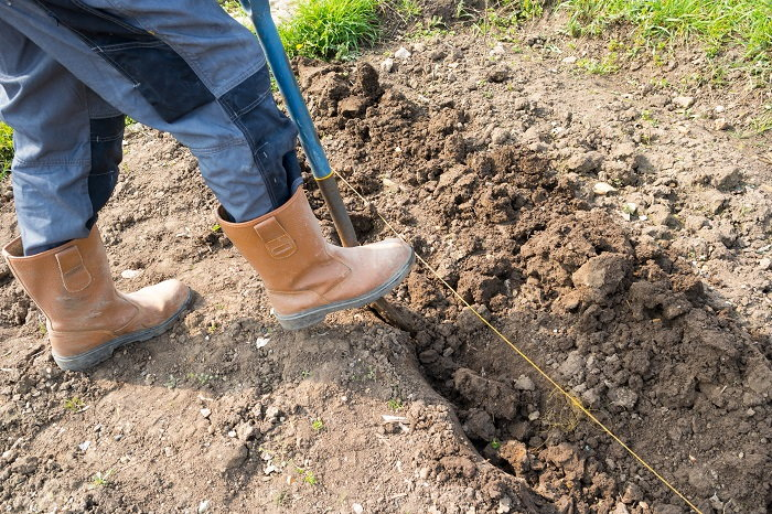 digging the trench for a raised bed