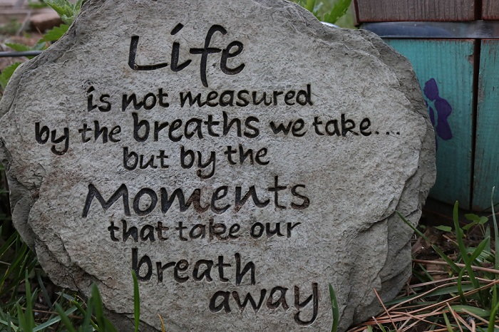 motivational garden stone