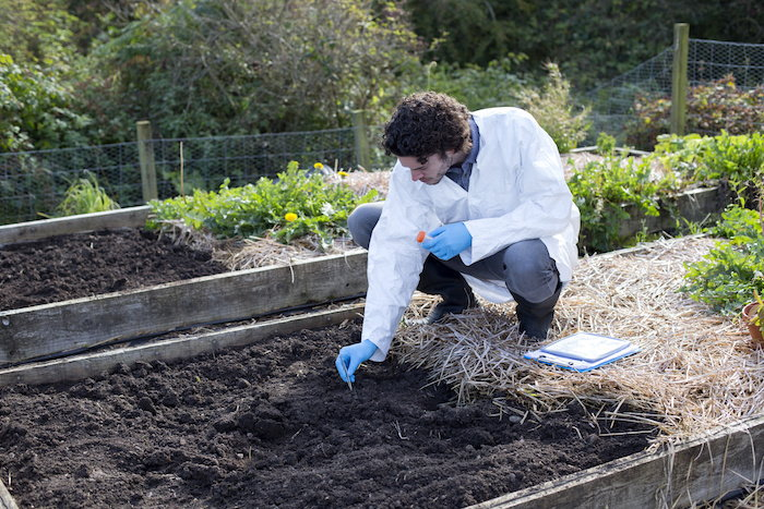 a scientist conducting a soil test