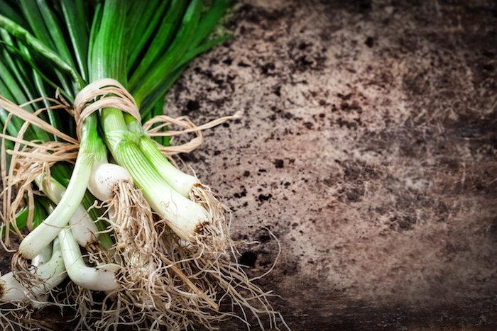 planting green onions