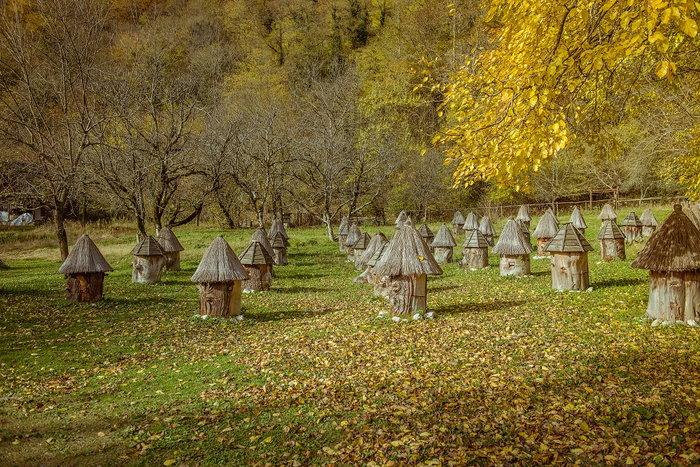 Bee huts