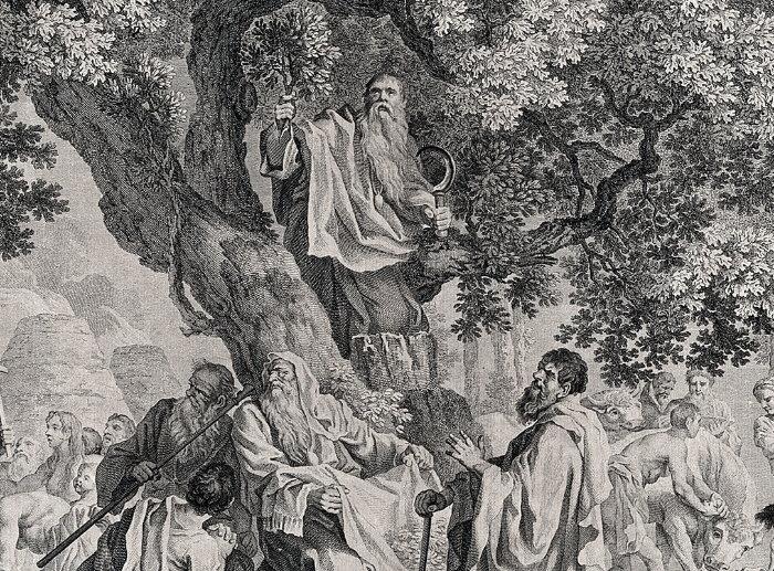 druids harvesting nmistletoe