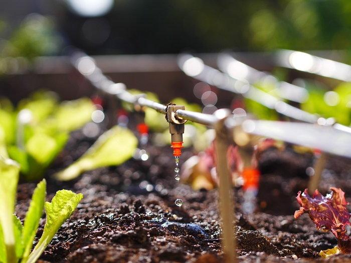 drip irrigation emitters